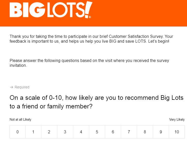 biglots survey code