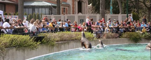 New York Zoos and Aquarium Survey